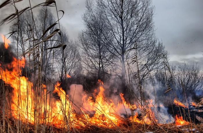 Opasnosti od požara na otvorenom prostoru