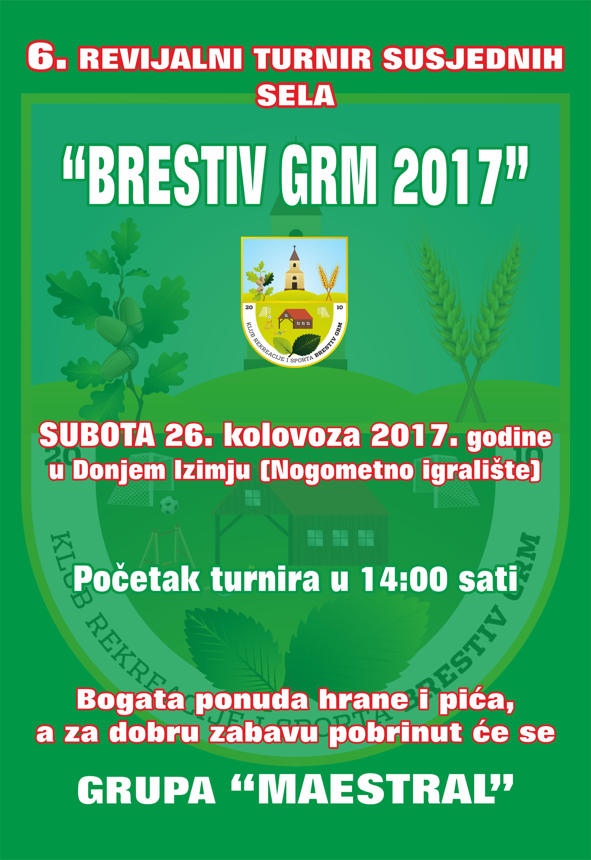 DVD Donje Izimje - plakat brestiv grm-1